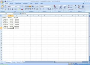 imporneracaaccountingportable6